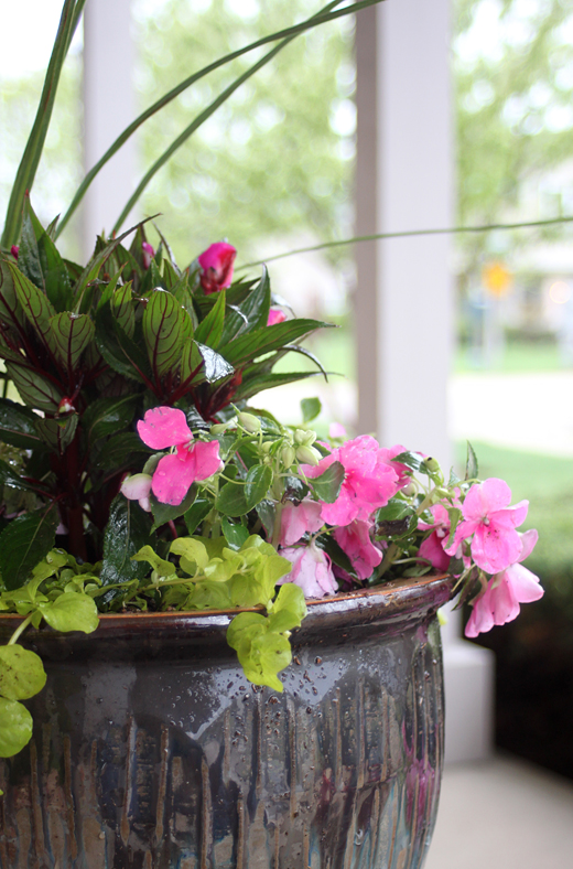 back porch decorating ideas - potted plants