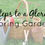 5 Steps to a Glorious Spring Garden