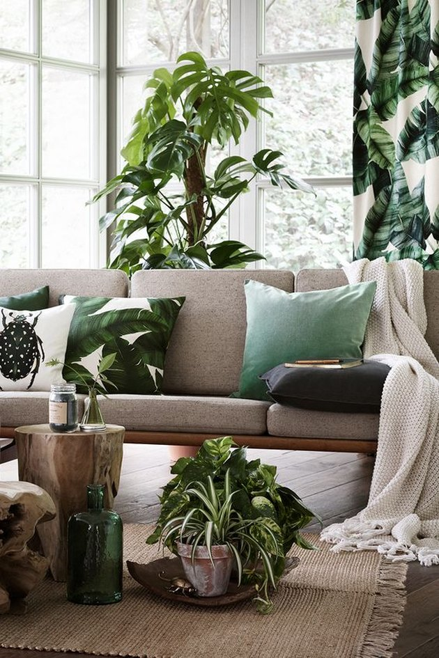 tropical design ideas