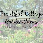 Beautiful Cottage Garden Ideas and Tips For Creating Your Own